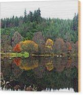 Boathouse On Loch Ard Wood Print