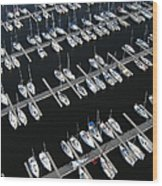 Boats At Nepean Sailing Club Wood Print