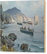 Boats In A Rocky Cove  Wood Print