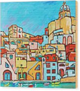 Boats In Front Of The Buildings Vii Wood Print