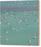 Boats In Harbor Wood Print