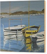 boats of Cadaques Wood Print