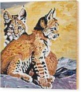 Bob Kittens Wood Print by Phyllis Kaltenbach