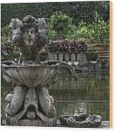 Boboli Fountain Wood Print