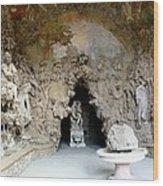 Boboli La Grotta Grande 3 Wood Print by Ellen Henneke