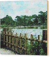 Boca Morikami Gardens Wood Print
