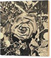 Boca Rose Wood Print