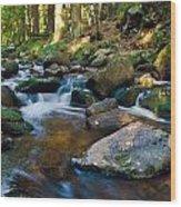 Bodefall Wood Print