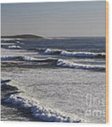 Bodega Bay Beach Wood Print