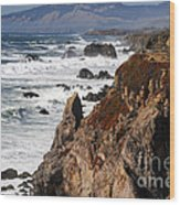 Bodega Bay Color Wood Print