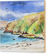Bodega Head California Wood Print