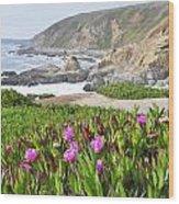 Bodega Head View Wood Print