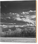 Bode's Domain Wood Print