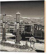 Bodie Gas Station Wood Print