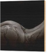 Bodyscape 541 Wood Print