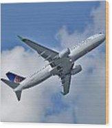 Boeing 737-800 Wood Print