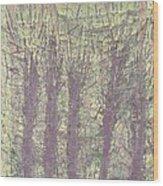 Bog Forms Through Fog  Wood Print
