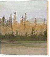 Bog Out Back Wood Print by Bruce Richardson