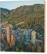 Bogota Colombia Wood Print