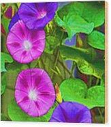 Bohemian Garden Morning Glory Wood Print