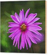 Bohemian Garden Pink Wood Print