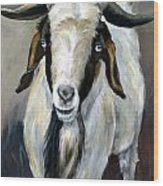 Bohr Goat With Blue Eyes Wood Print