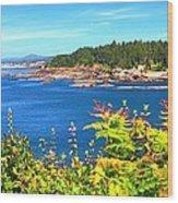 Boiler Bay 17133 Wood Print