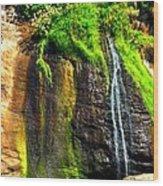 Boiler Bay Stream 17178 Wood Print