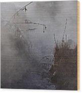 Boiling River  Ynp    Wood Print