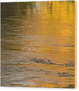 Boise River Autumn Abstract Wood Print