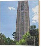 Bok Tower Wood Print