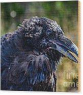 Bold And Demanding Raven Wood Print