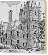 Boldt Castle With Seagull Wood Print