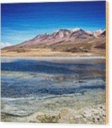 Bolivia Desert Lake Framed Wood Print