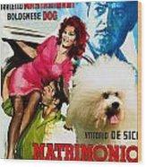 Bolognese Dog Art - Matrimonio All Italiana Movie Poster Wood Print