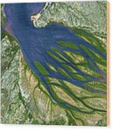 Bombetoka Bay Madagascar Wood Print by Adam Romanowicz