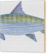 Bonefish Wood Print