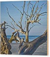 Boneyard Beach 3 Wood Print