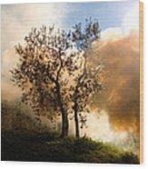Bonfire And Olive Tree Wood Print