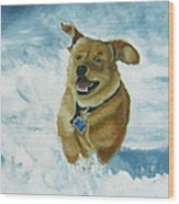 Bongo In The Snow Wood Print