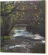Bonne Femme Creek Wood Print