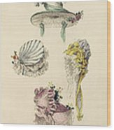 Bonnets For An Occasion, Fashion Plate Wood Print