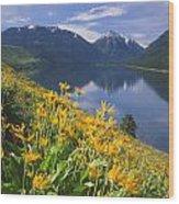 M-05921-bonneville Mountain Reflected In Wallow Lake Wood Print