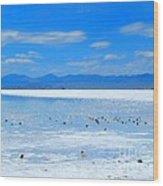 Bonneville Salt Flats After The Rain Wood Print