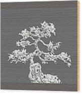 Bonsai II Wood Print