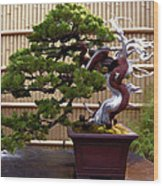 Bonsai Tree And Bamboo Fence Wood Print by Elaine Plesser