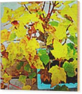 Bonsai Tree With Yellow Leaves Wood Print