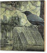 Book Of Wisdom Wood Print