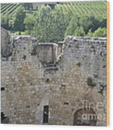 Bordeaux Castle Ruins With Vineyard Wood Print