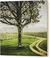 Bordeaux Vineyard Wood Print